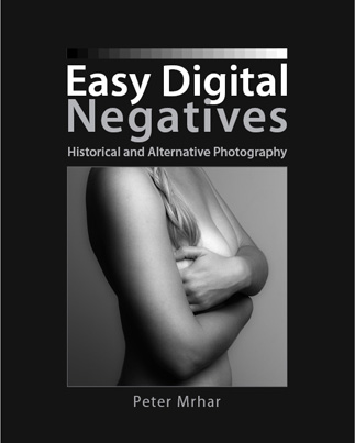 Easy Digital Negatives -HIstorical and Alternative Photography